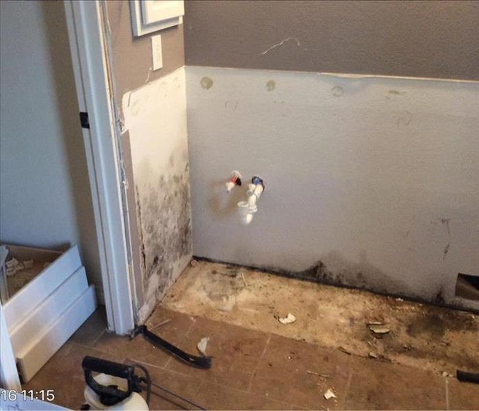 Mold Remediation in Prosper, TX Before