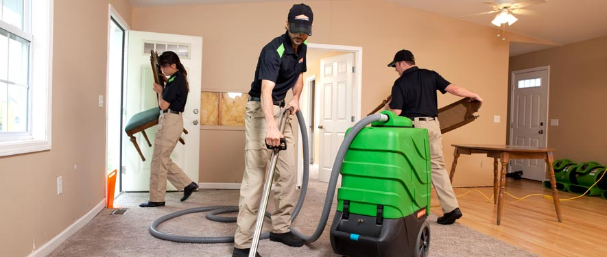 Prosper, TX cleaning services